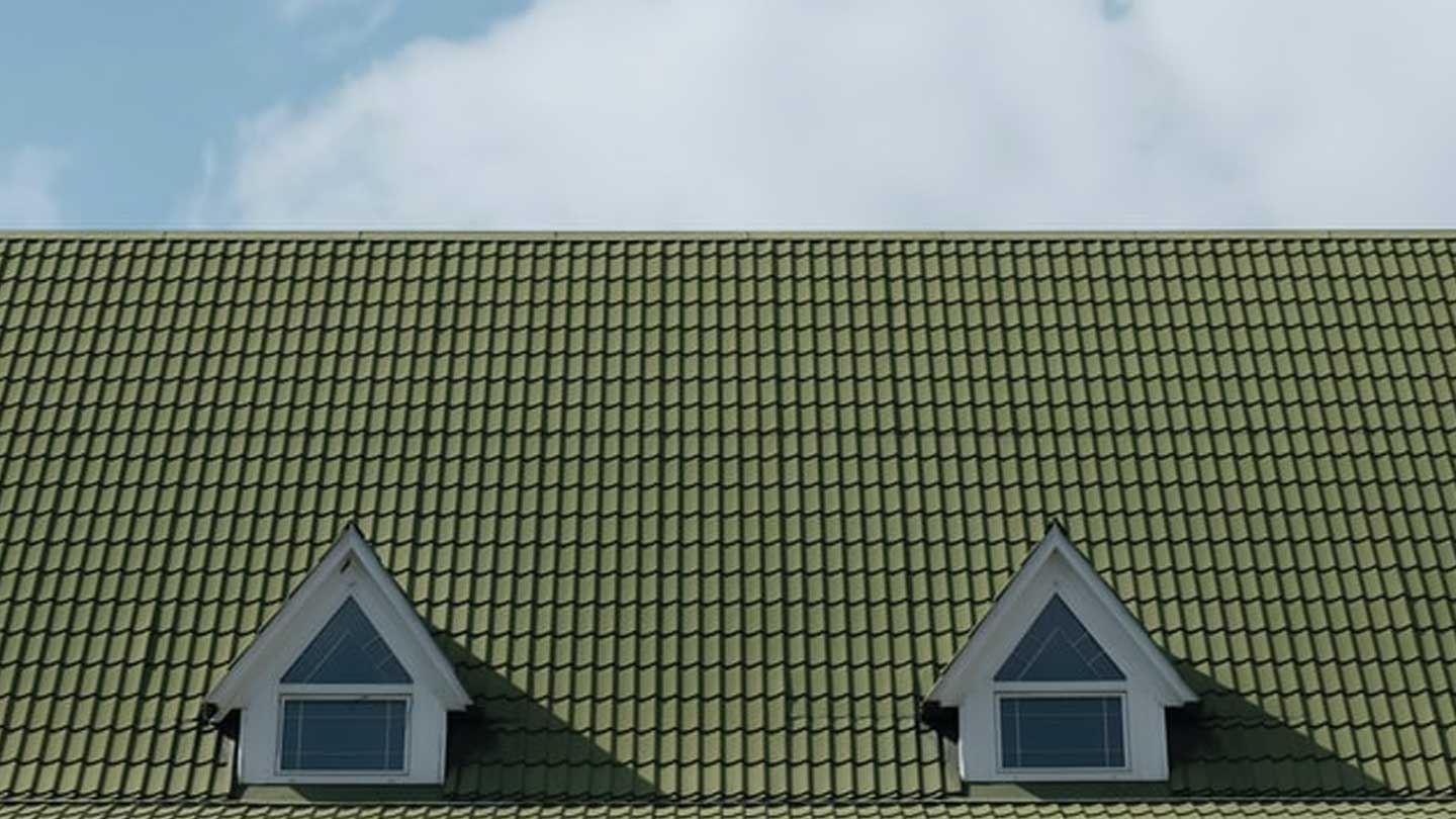 Detail of a green shingled roof
